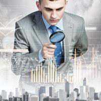 corporate investigation icon
