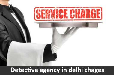 detective agency delhi charges